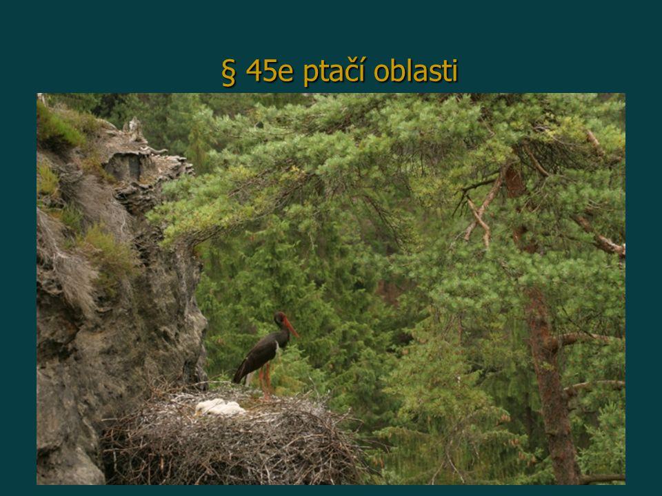 § 45e ptačí oblasti