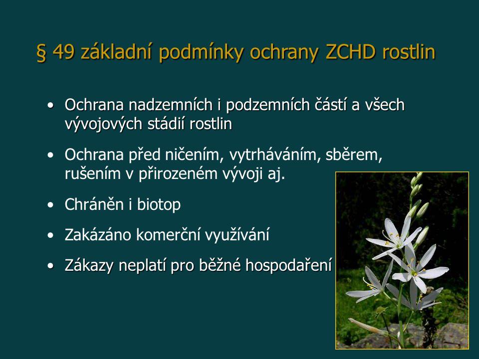 § 49 základní podmínky ochrany ZCHD rostlin Ochrana nadzemních i podzemních částí a všech vývojových stádií rostlinOchrana nadzemních i podzemních částí a všech vývojových stádií rostlin Ochrana před ničením, vytrháváním, sběrem, rušením v přirozeném vývoji aj.