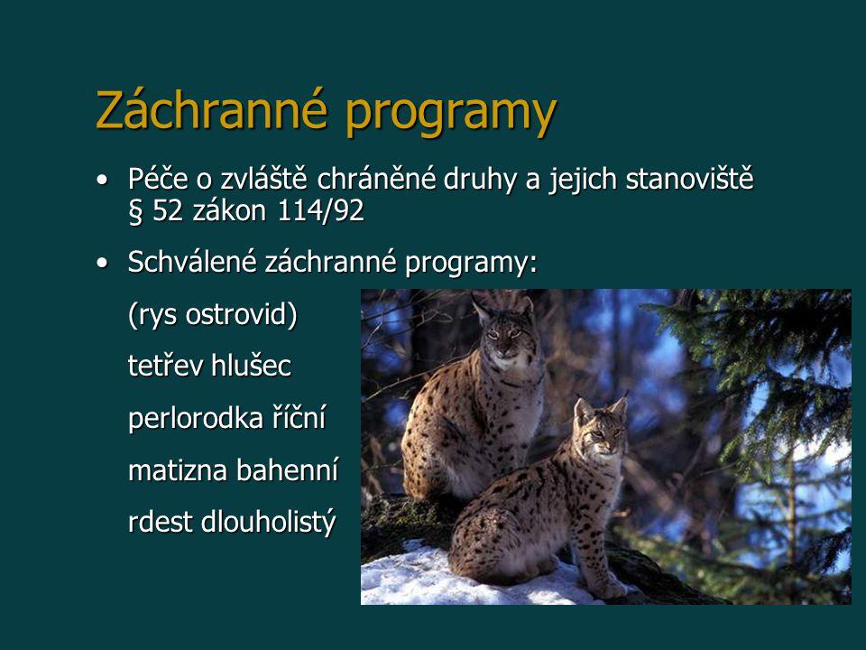 Záchranné programy Péče o zvláště chráněné druhy a jejich stanoviště § 52 zákon 114/92Péče o zvláště chráněné druhy a jejich stanoviště § 52 zákon 114