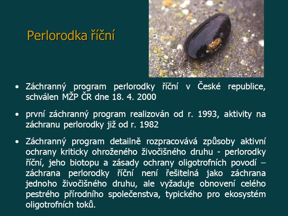 Perlorodka říční Záchranný program perlorodky říční v České republice, schválen MŽP ČR dne 18. 4. 2000 první záchranný program realizován od r. 1993,