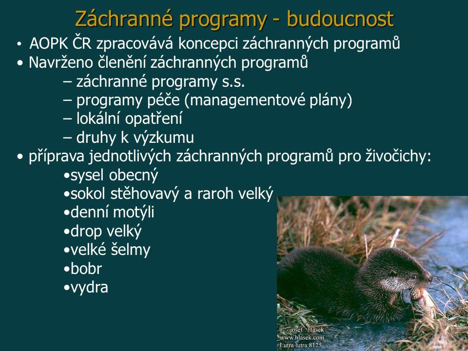 Záchranné programy - budoucnost AOPK ČR zpracovává koncepci záchranných programů Navrženo členění záchranných programů – záchranné programy s.s.