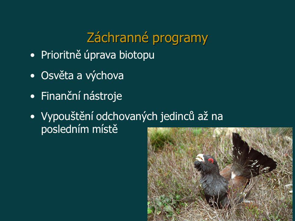 Záchranné programy Prioritně úprava biotopu Osvěta a výchova Finanční nástroje Vypouštění odchovaných jedinců až na posledním místě