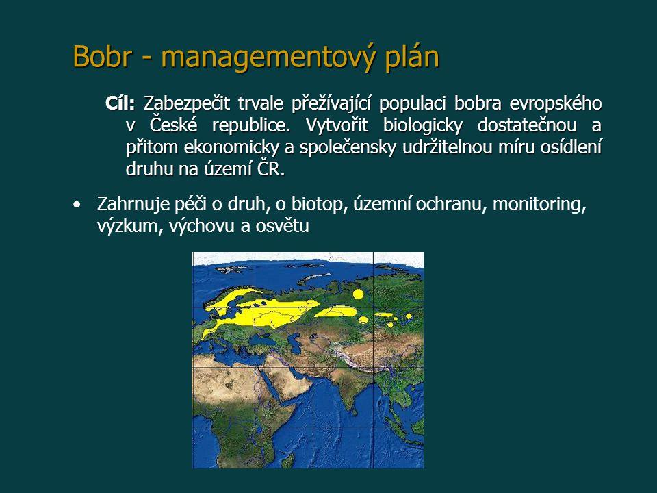 Bobr - managementový plán Cíl: Zabezpečit trvale přežívající populaci bobra evropského v České republice. Vytvořit biologicky dostatečnou a přitom eko