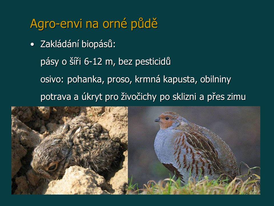 Agro-envi na orné půdě Zakládání biopásů:Zakládání biopásů: pásy o šíři 6-12 m, bez pesticidů osivo: pohanka, proso, krmná kapusta, obilniny potrava a úkryt pro živočichy po sklizni a přes zimu