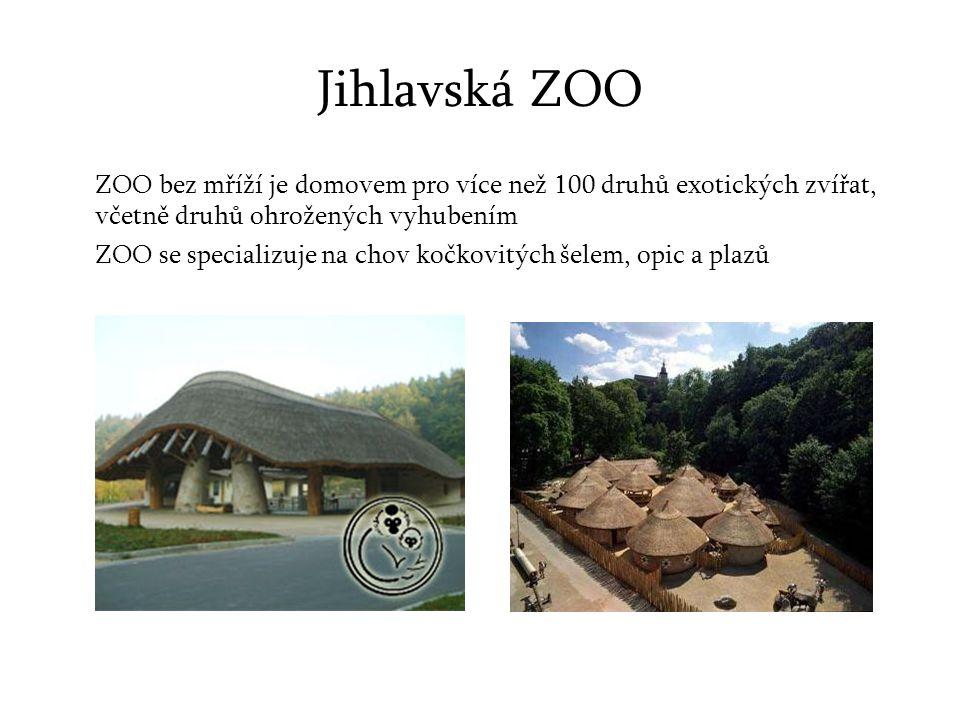 Jihlavská ZOO ZOO bez mříží je domovem pro více než 100 druhů exotických zvířat, včetně druhů ohrožených vyhubením ZOO se specializuje na chov kočkovitých šelem, opic a plazů
