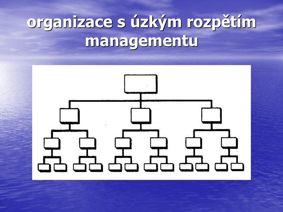 organizace s úzkým rozpětím managementu