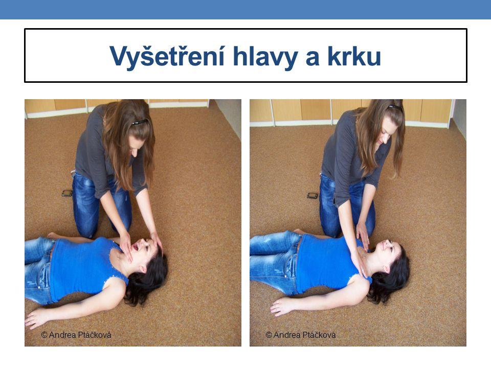 Vyšetření hlavy a krku © Andrea Ptáčková