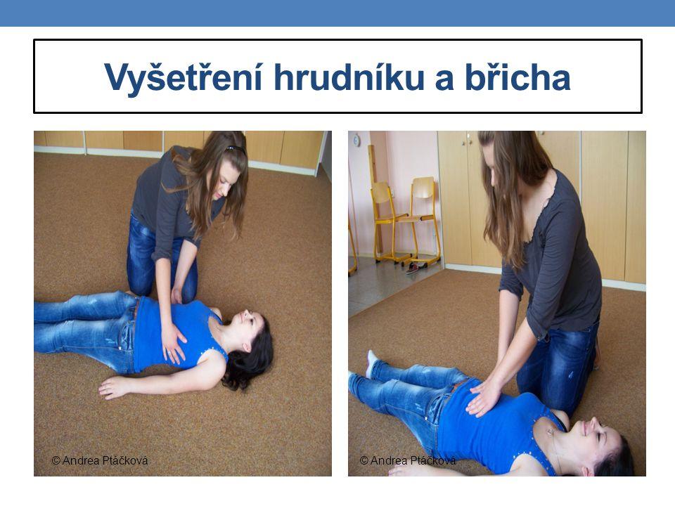 Vyšetření hrudníku a břicha © Andrea Ptáčková