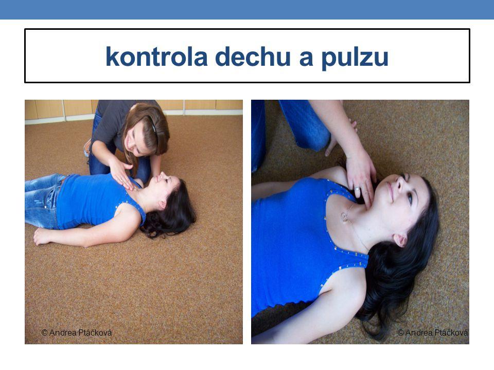 kontrola dechu a pulzu © Andrea Ptáčková