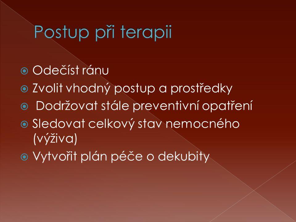  Odečíst ránu  Zvolit vhodný postup a prostředky  Dodržovat stále preventivní opatření  Sledovat celkový stav nemocného (výživa)  Vytvořit plán p