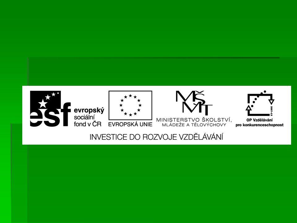 EU ICT2/1/1/16 Člověk a svět práce – 4.,5.
