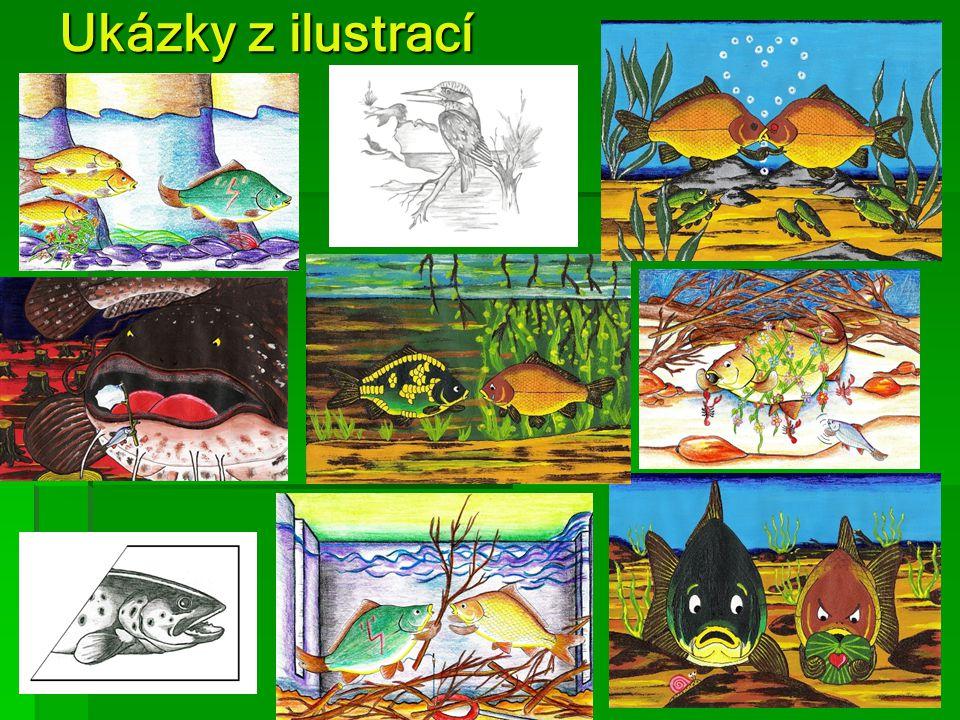 Ukázky z ilustrací