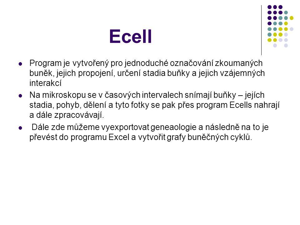 Ecell Program je vytvořený pro jednoduché označování zkoumaných buněk, jejich propojení, určení stadia buňky a jejich vzájemných interakcí Na mikroskopu se v časových intervalech snímají buňky – jejích stadia, pohyb, dělení a tyto fotky se pak přes program Ecells nahrají a dále zpracovávají.