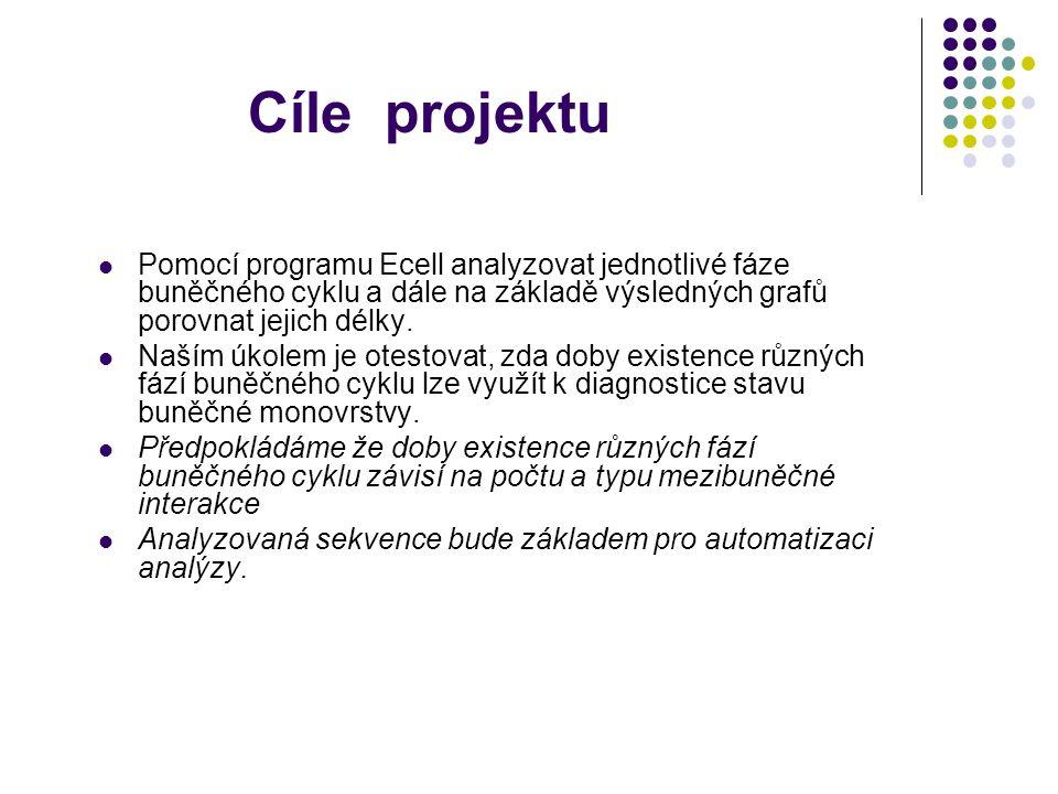 Děkuji vedoucímu projektu Doc.RNDr. Dalibor Štys CSc.
