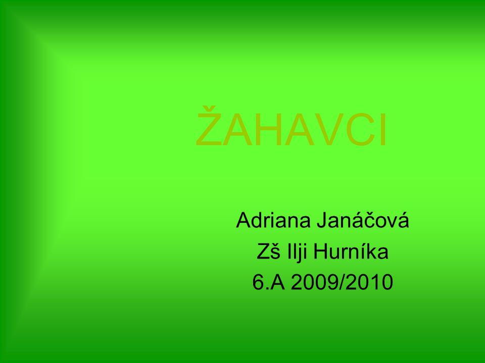 ŽAHAVCI Adriana Janáčová Zš Ilji Hurníka 6.A 2009/2010