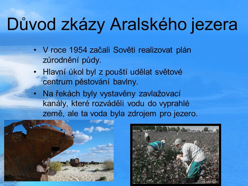 Největší problémy Aralské jezero bylo důležitým klimatickým regulátorem okolních pouštních a stepních oblastí, jeho vysychání výrazně změnilo klima ce
