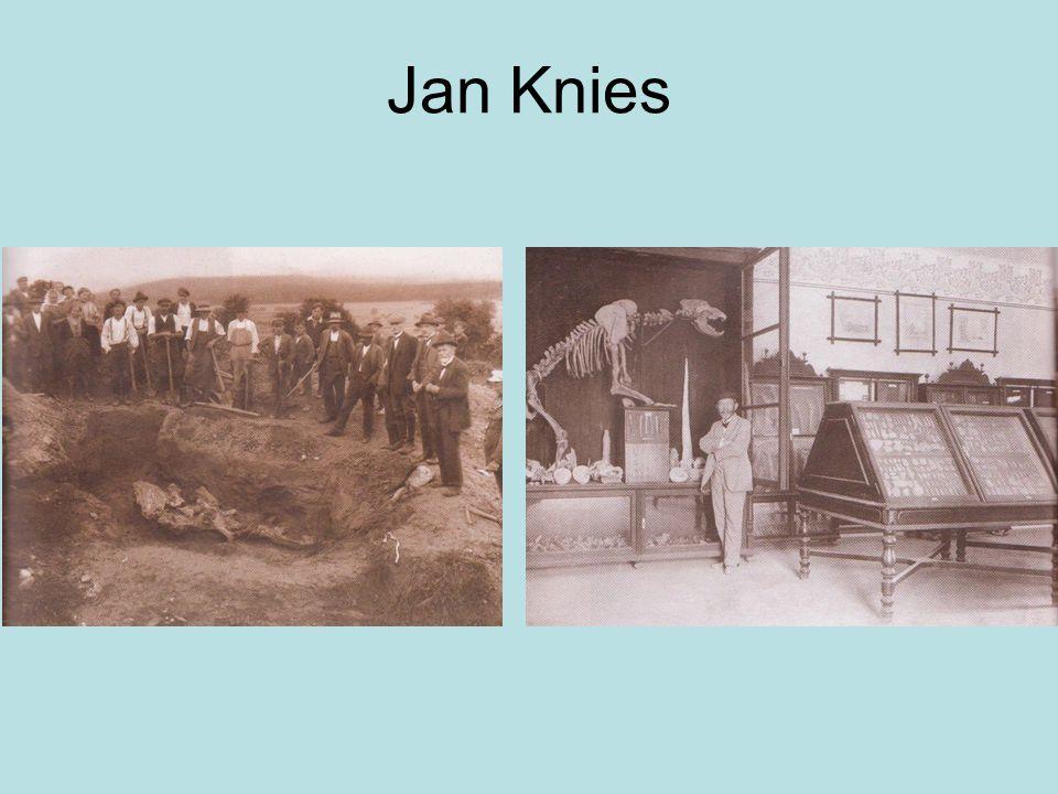 Jan Knies