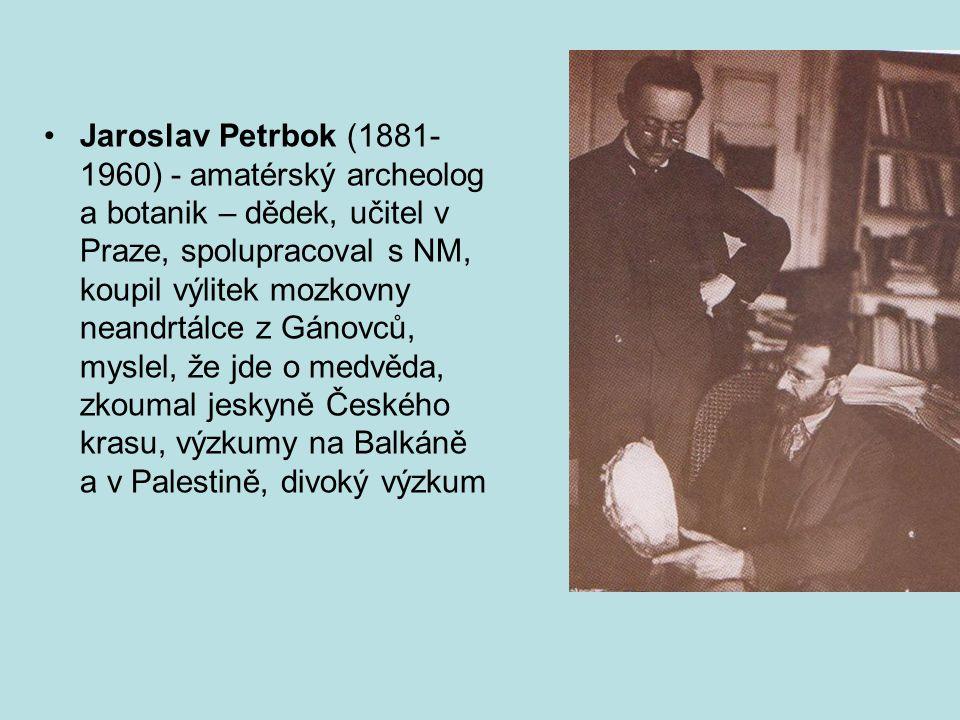 Jaroslav Petrbok (1881- 1960) - amatérský archeolog a botanik – dědek, učitel v Praze, spolupracoval s NM, koupil výlitek mozkovny neandrtálce z Gánovců, myslel, že jde o medvěda, zkoumal jeskyně Českého krasu, výzkumy na Balkáně a v Palestině, divoký výzkum