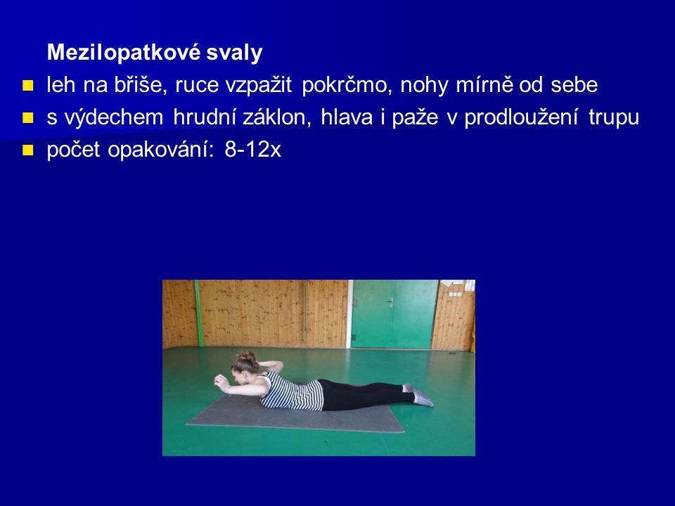 Mezilopatkové svaly leh na břiše, ruce vzpažit pokrčmo, nohy mírně od sebe s výdechem hrudní záklon, hlava i paže v prodloužení trupu počet opakování: 8-12x