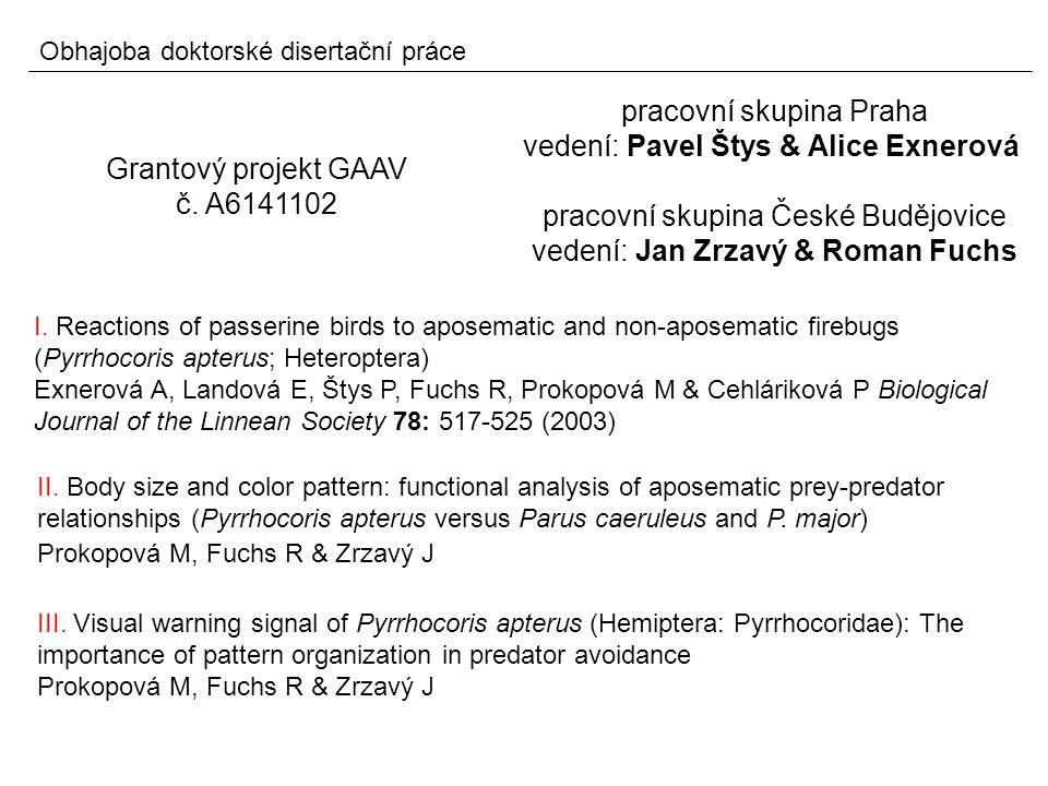 III. Visual warning signal of Pyrrhocoris apterus