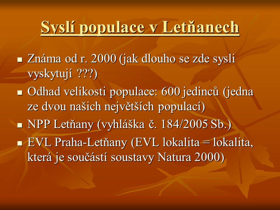 Syslí populace v Letňanech Známa od r.2000 (jak dlouho se zde sysli vyskytují ???) Známa od r.