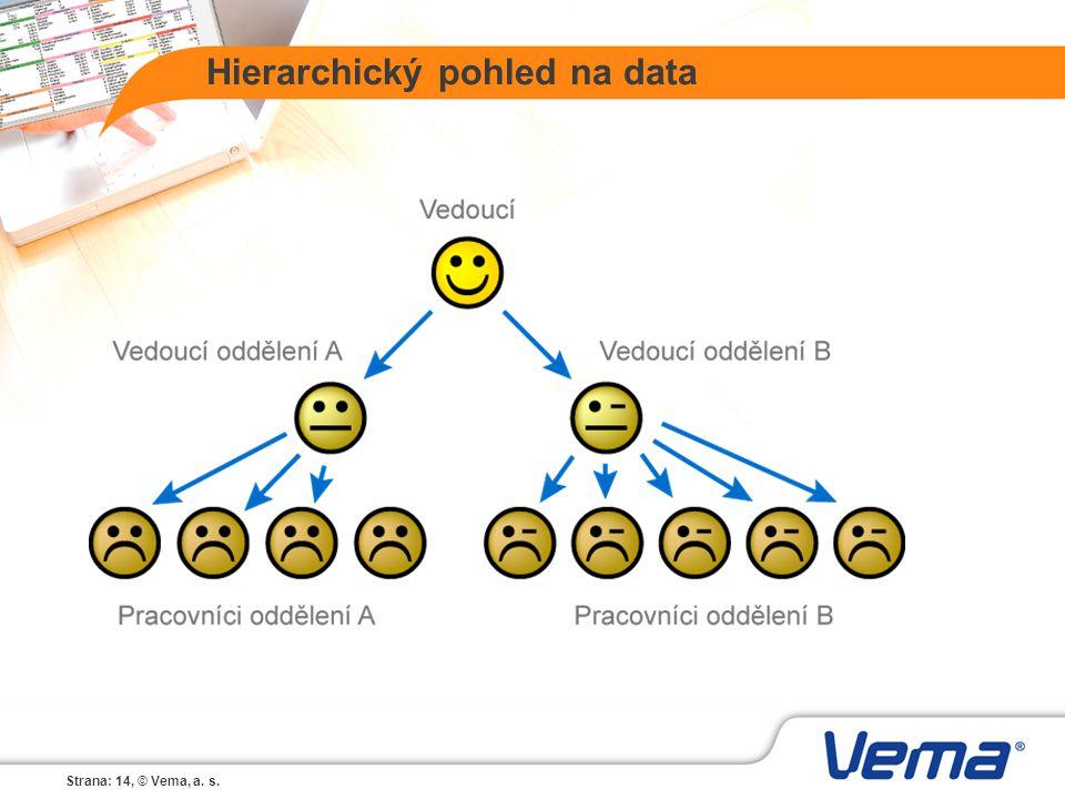 Strana: 14, © Vema, a. s. Hierarchický pohled na data