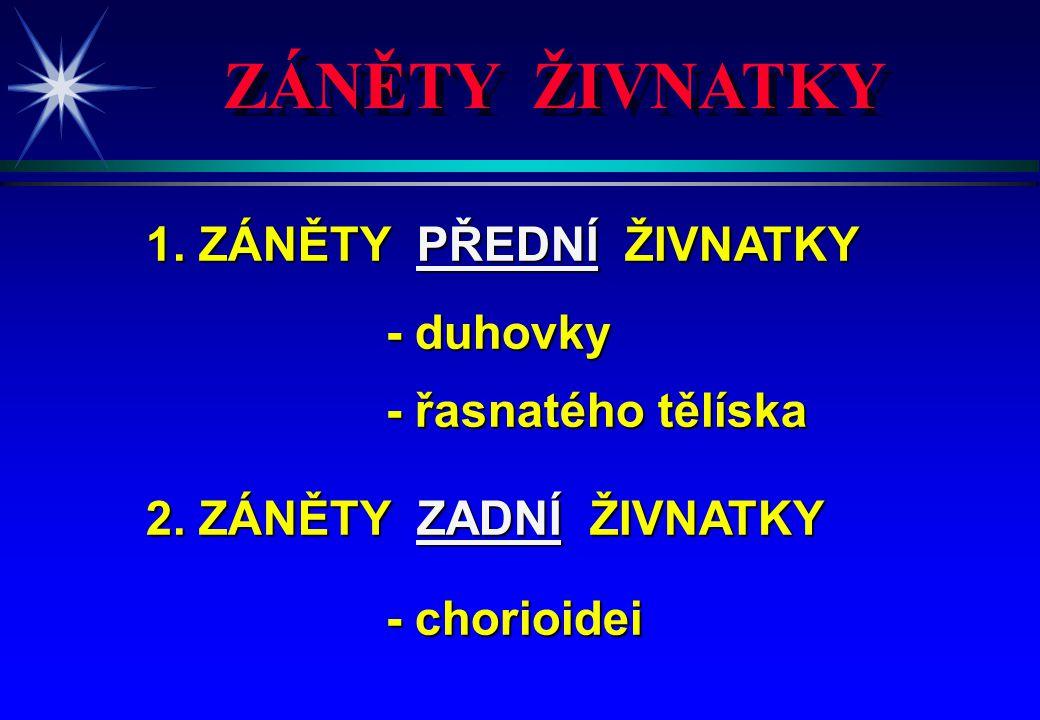 ETIOLOGIE IRIDOCYKLITIS ETIOLOGIE IRIDOCYKLITIS 1.