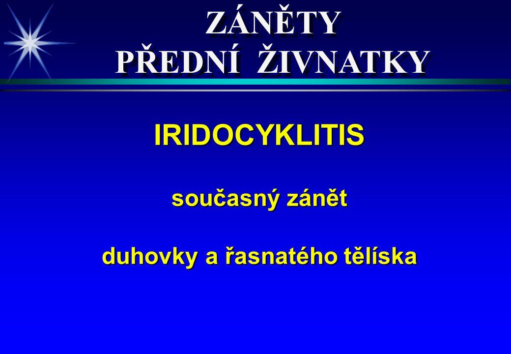 ETIOLOGIE IRIDOCYKLITIS ETIOLOGIE IRIDOCYKLITIS V 80% nezjistíme příčinu.