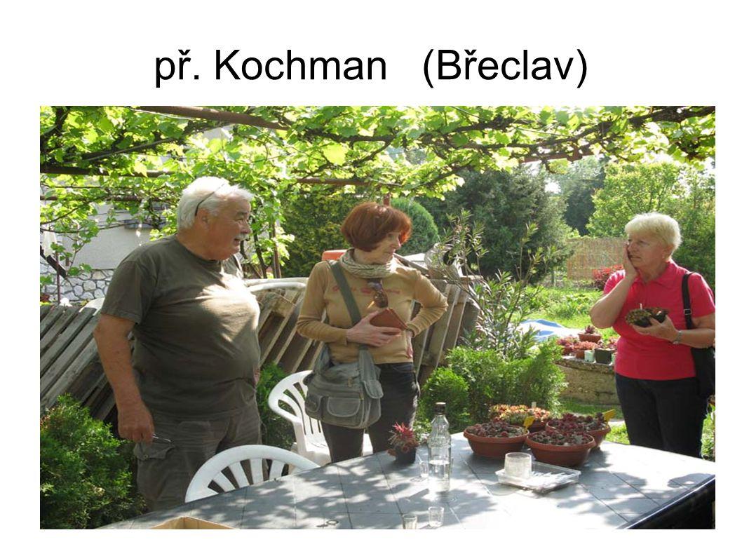 př. Kochman (Břeclav)