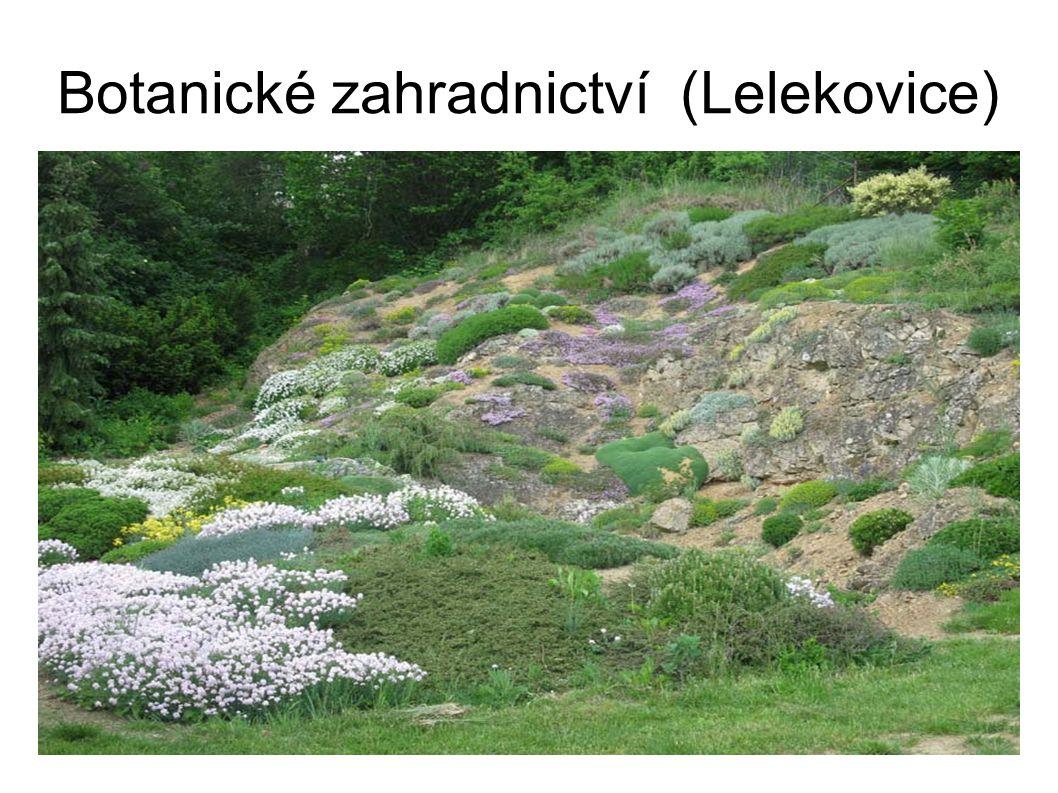 Botanické zahradnictví (Lelekovice)