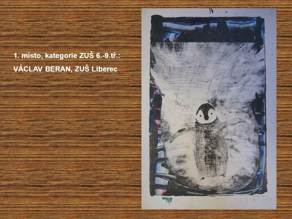 1. místo, kategorie ZUŠ 6.-9.tř.: VÁCLAV BERAN, ZUŠ Liberec