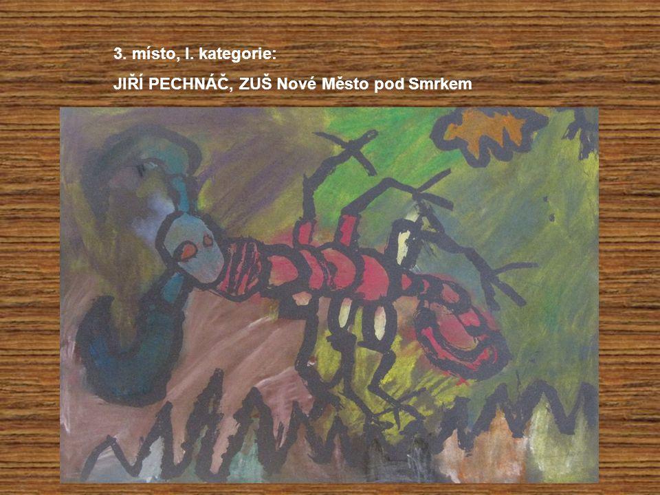 2. místo, III.kategorie: ZUZANA WOITHOVÁ, ZŠ DOCTRINA, Liberec