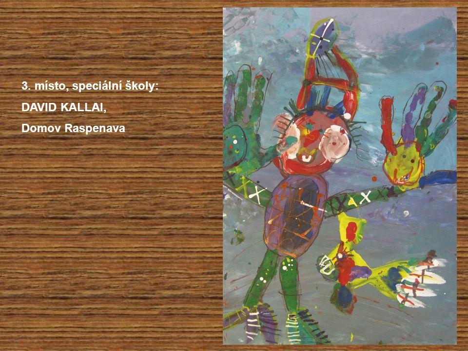 3. místo, speciální školy: DAVID KALLAI, Domov Raspenava