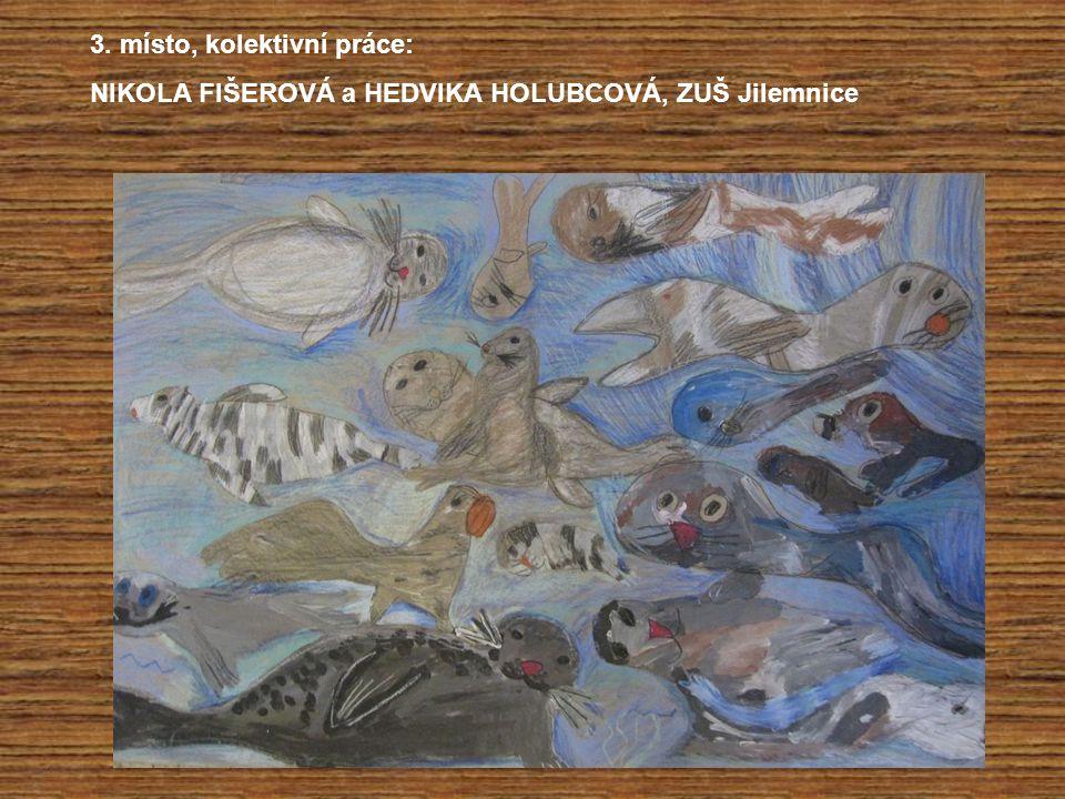 3. místo, kolektivní práce: NIKOLA FIŠEROVÁ a HEDVIKA HOLUBCOVÁ, ZUŠ Jilemnice