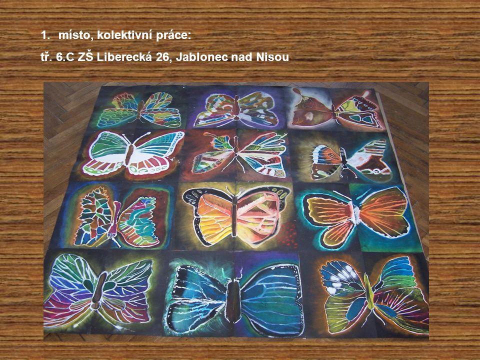 1.místo, kolektivní práce: tř. 6.C ZŠ Liberecká 26, Jablonec nad Nisou