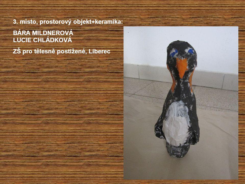 3. místo, prostorový objekt+keramika: BÁRA MILDNEROVÁ LUCIE CHLÁDKOVÁ ZŠ pro tělesně postižené, Liberec