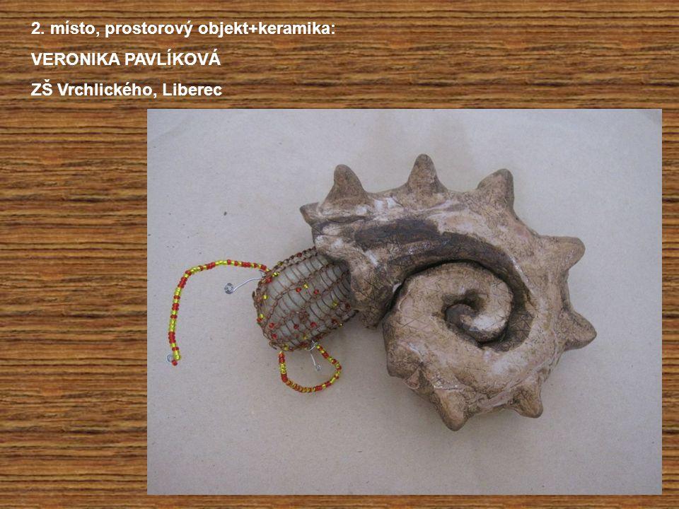 2. místo, prostorový objekt+keramika: VERONIKA PAVLÍKOVÁ ZŠ Vrchlického, Liberec