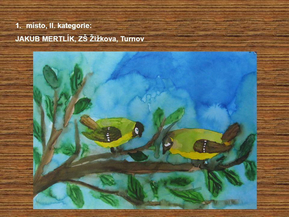 1.místo, II. kategorie: JAKUB MERTLÍK, ZŠ Žižkova, Turnov