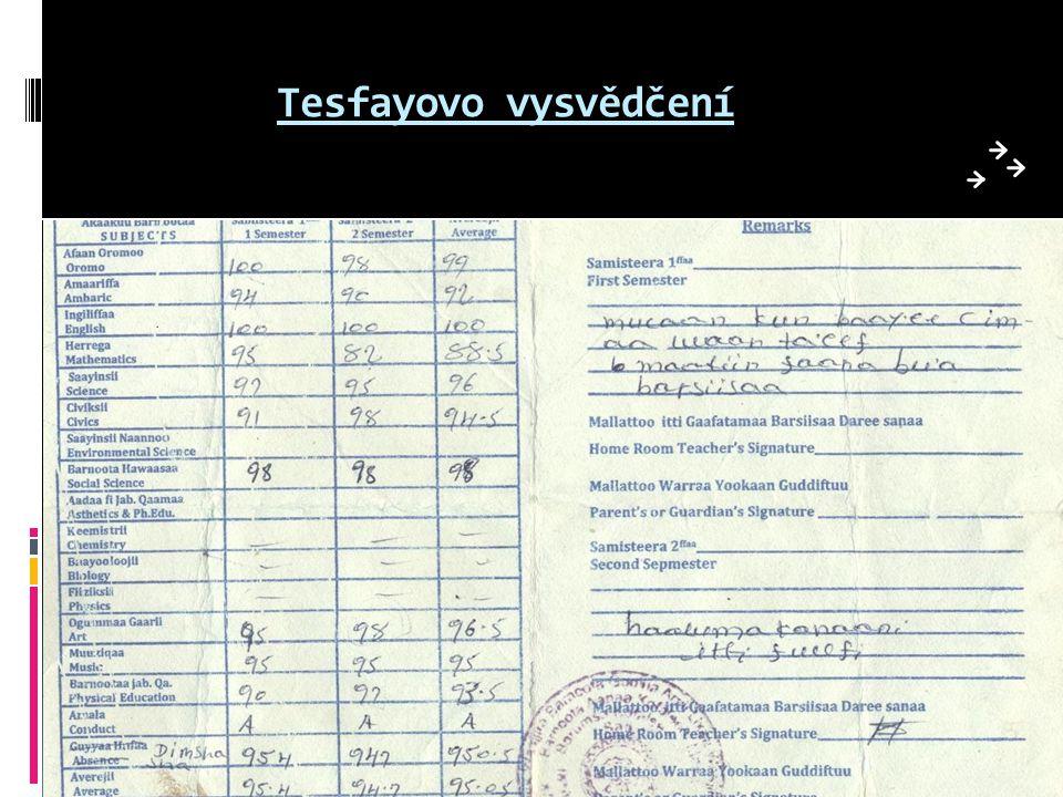 Tesfayovo vysvědčení