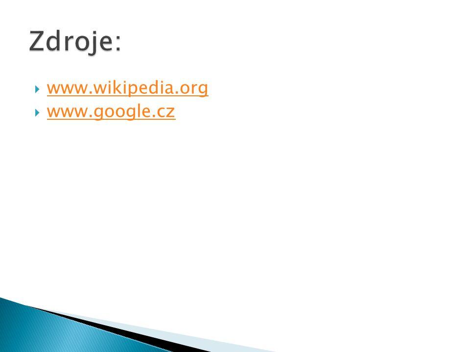  www.wikipedia.org www.wikipedia.org  www.google.cz www.google.cz