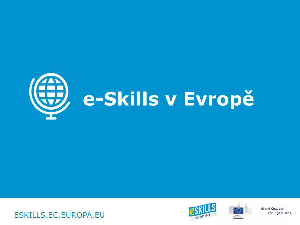 ESKILLS.EC.EUROPA.EU e-Skills v Evropě