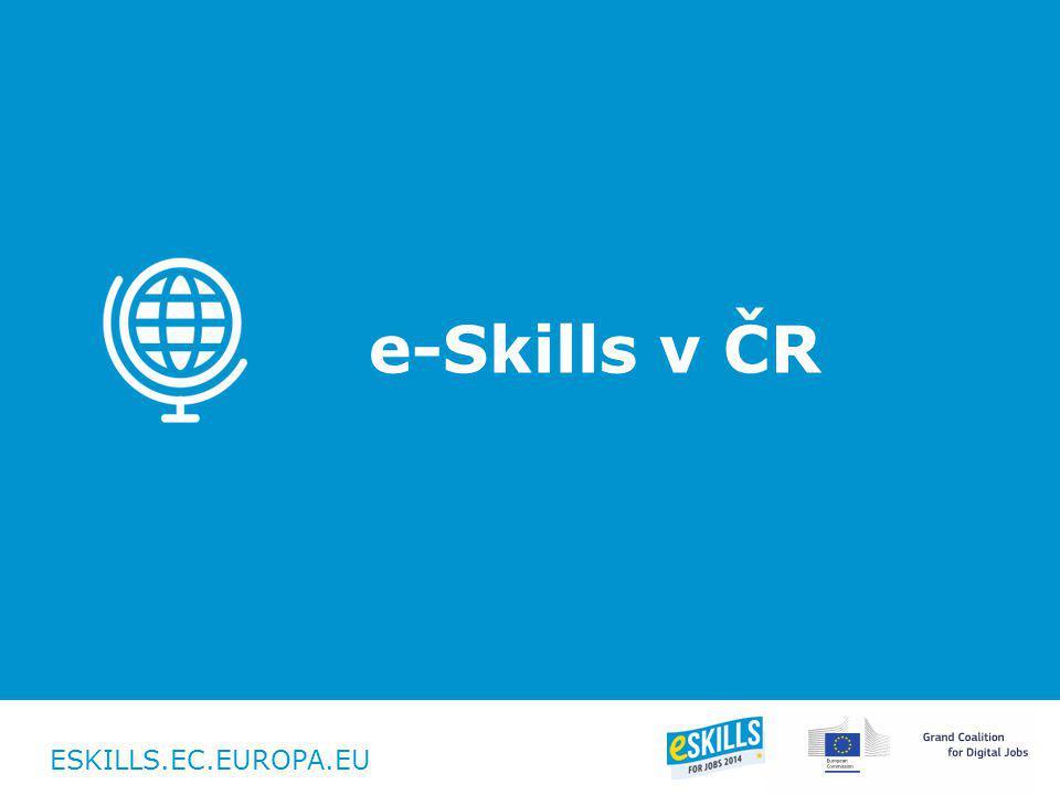 ESKILLS.EC.EUROPA.EU e-Skills v ČR