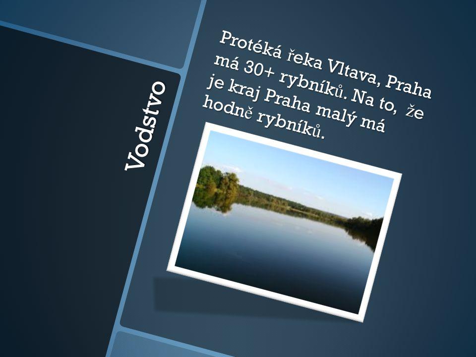 Vodstvo Protéká ř eka Vltava, Praha má 30+ rybník ů. Na to, ž e je kraj Praha malý má hodn ě rybník ů.