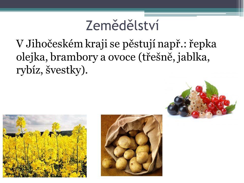 Zemědělství V Jihočeském kraji se pěstují např.: řepka olejka, brambory a ovoce (třešně, jablka, rybíz, švestky).