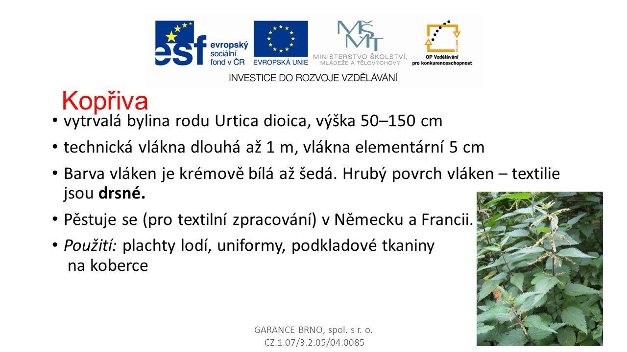 Kopřiva vytrvalá bylina rodu Urtica dioica, výška 50–150 cm technická vlákna dlouhá až 1 m, vlákna elementární 5 cm Barva vláken je krémově bílá až še