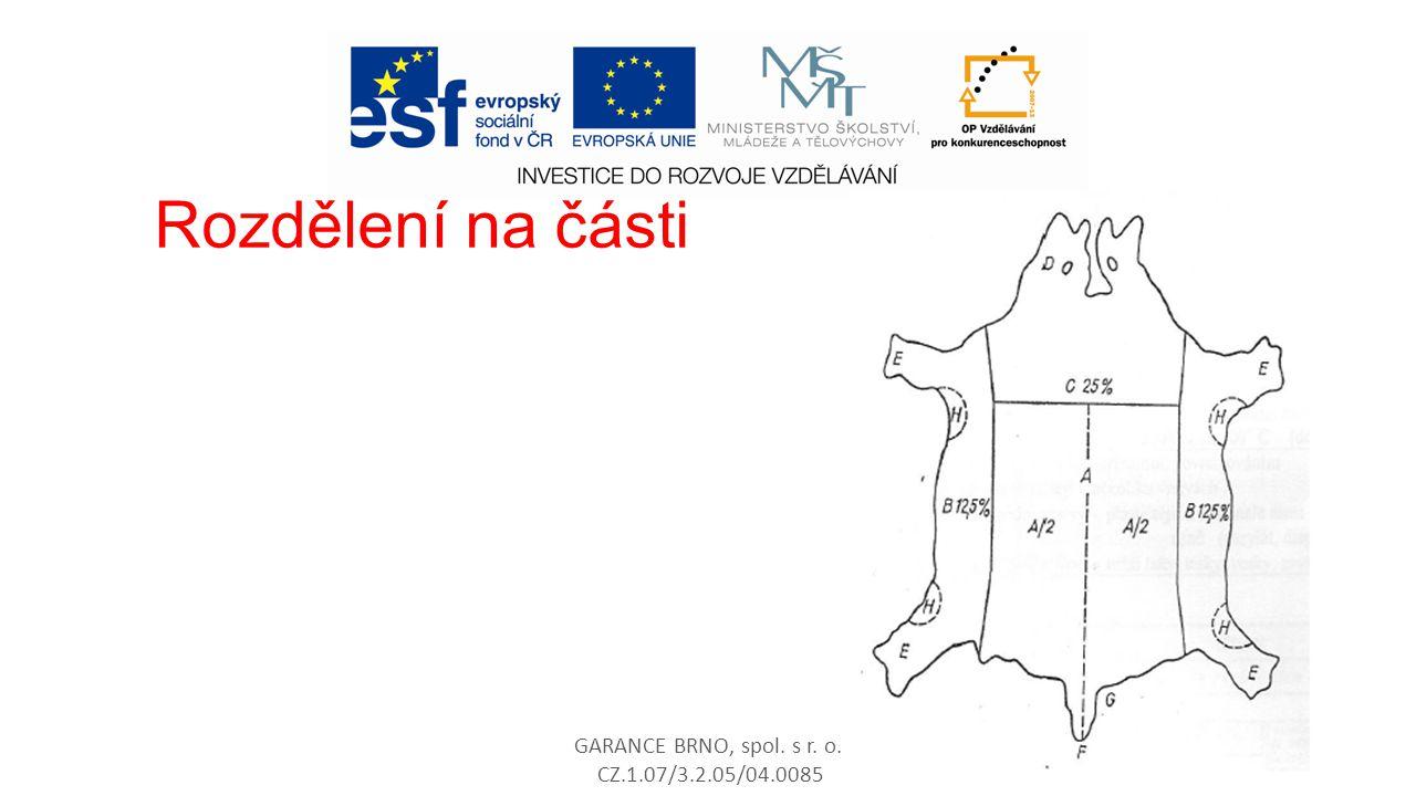 GARANCE BRNO, spol. s r. o. CZ.1.07/3.2.05/04.0085 69 Rozdělení na části