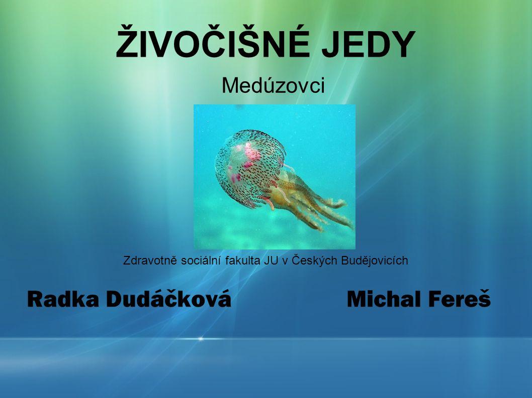 ŽIVOČIŠNÉ JEDY Zdravotně sociální fakulta JU v Českých Budějovicích Radka Dudáčková Michal Fereš Medúzovci