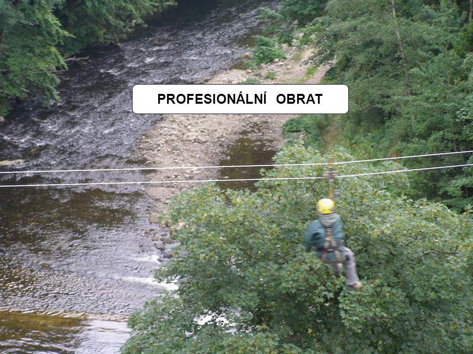 PROFESIONÁLNÍ OBRAT