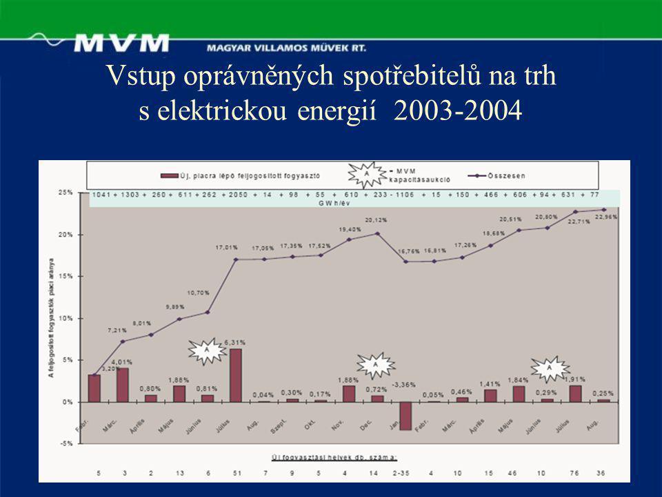 Vstup oprávněných spotřebitelů na trh s elektrickou energií 2003-2004