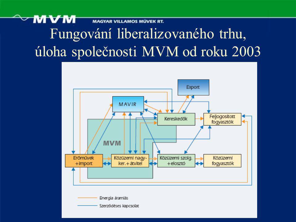 Fungování liberalizovaného trhu, úloha společnosti MVM od roku 2003
